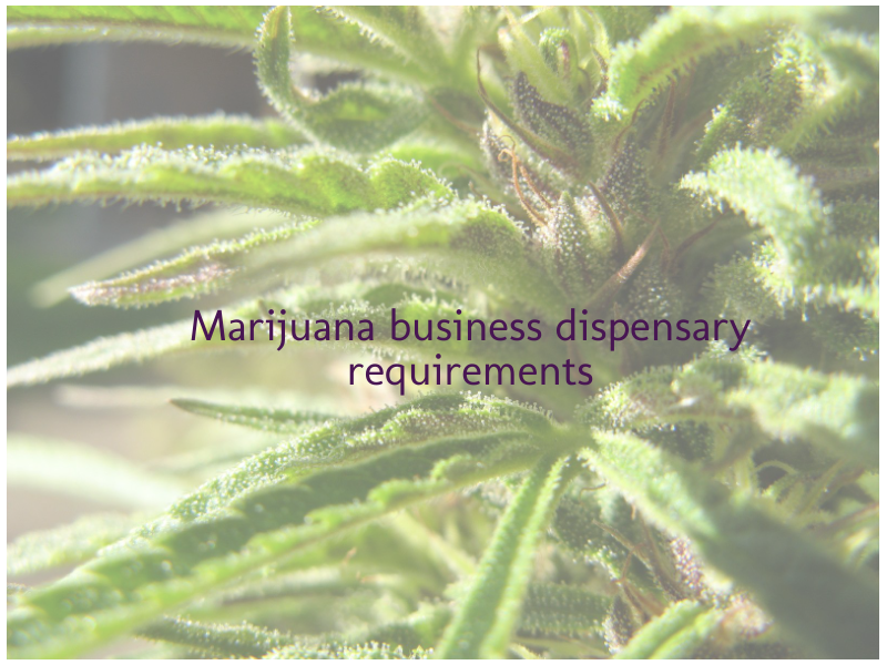 Marijuana business dispensary requirements