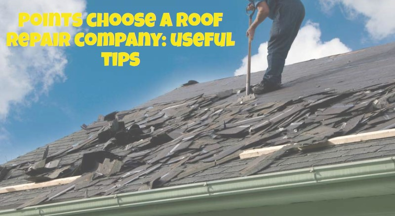 Points choose a roof repair company: useful tips